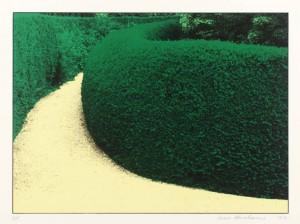 Garden Suite III 1970 by Ivor Abrahams born 1935