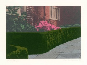 Privacy Plots III: Suburban Hedge 1970 by Ivor Abrahams born 1935