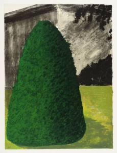 Suburban Shrub I (Dawn) 1972 by Ivor Abrahams born 1935