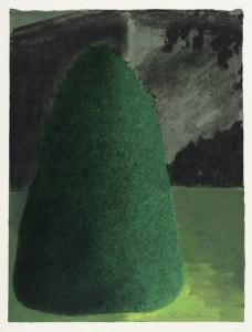 Suburban Shrub II (Dusk) 1972 by Ivor Abrahams born 1935