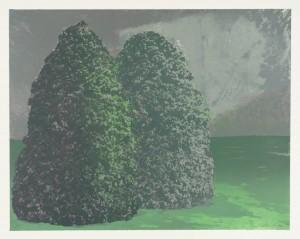 Double Shrub II 1973 by Ivor Abrahams born 1935